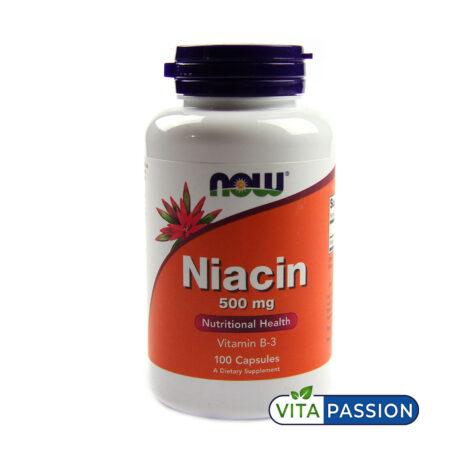 NIACIN 100 CAPSULES NOW